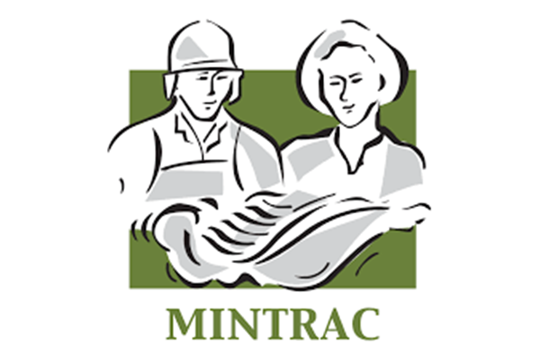 MINTRAC Corrective Statement on SMH article re foreign meat workers